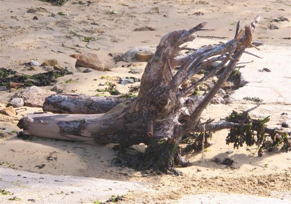 Conversation sur le sable