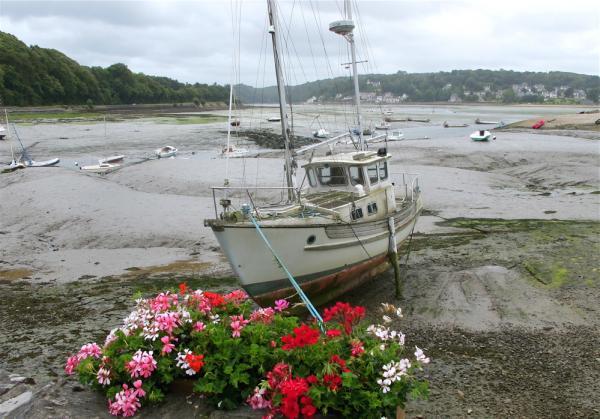 Fleurs pour un bateau