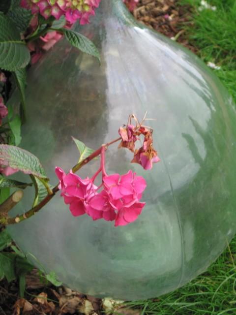 Le vase de l'alchimiste